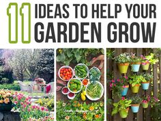 11 Ideas to Help Your Garden Grow