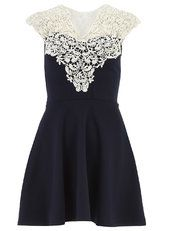 Scarlett B Navy lace skater dress
