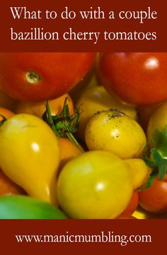 Today, we're talking tomatoes. Need ideas? Funny Girls, You Funny, Funny Stuff, Hilarious, Smiles And Laughs, Make You Cry, Brighten Your Day, Girl Humor, Schmidt