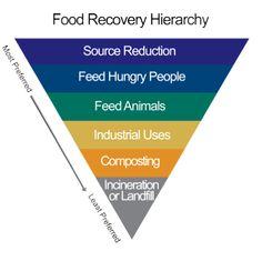 Eerste Hulp bij Voedselverspilling - Food Film Festival