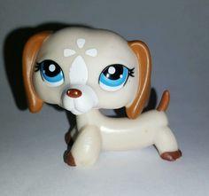 Littlest Pet Shop Copper Tan White Dachshund Blue Eyes #1491 Preowned LPS in Toys & Hobbies, Preschool Toys & Pretend Play, Littlest Pet Shop | eBay