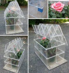 CD Case Greenhouse! http://www.soyouthinkyourecrafty.com/2012/07/cd-case-greenhouse-tutorial/