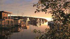 im jaich wasserferienwelt Rügen: Schwimmende Ferienhäuser