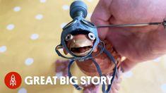 Great Big Story ci fa scoprire l'arte del burattinaio Barnaby Dixon che ci insegna a creare una piccola marionetta con nastro adesivo, forbici, una ...