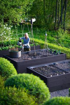 95cbdb8c Stain raised beds black to increase warmth in the early spring and fall,  and it also makes them prettier. Snyggt land i pallkragar i svart blyfri  färg.