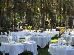 Deep Woods - Eugene Oregon Wedding Venue