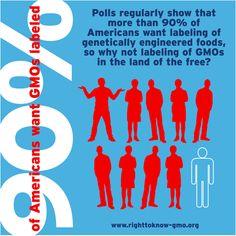 Polls show that more than 90% of Americans want labeling of GMO foods. / Les sondages révèlent que 90% des Américains sont pour l'étiquetage des aliments OGM.