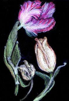 'Tulpenköpfe' von Birgit Schlegel bei artflakes.com als Poster oder Kunstdruck