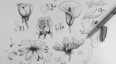 Pen & Ink Drawing Tutorial | How to draw flowers