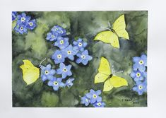 Watercolour of butterflies and forgetmenots Watercolour, Butterflies, Painting, Art, Watercolor, Watercolor Painting, Painting Art, Butterfly, Paintings