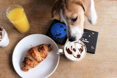 Your PET custom coffee stencil