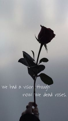 deadroses - blackbear  #blackbear #lyrics #deadroses #wallpaperiphone