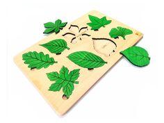 Drevená vkladačka listov slovenskej výroby, ktorá zabaví vaše detičky a zároveň pomôže vaším deťom rozvíjať jemnú motoriku, zručnosť,sústredenie a spoznávanie listov stromov. Drevená vkladačka listov je vyrobená z bukovej preglejky a natretá lakom a lazúrou s Atestom na detské hračky a je vhodná pre deti staršie ako 3 roky. Montessori, Playing Cards, Cards, Game Cards, Playing Card