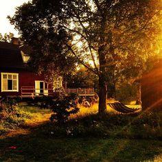 En 'gamla skola' i Halland #odegaard #halland #småland #red #detherersverige Foto: Ida Nordentoft Gustav