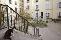Check out this awesome listing on Airbnb: Houdon Hideaway in Paris - this place is gorgeous, going to be hard to choose our flat for a week! Two Bedroom Apartments, Rental Apartments, Vacation Apartments, Vacation Trips, Vacation Ideas, Paris, Perfect Place, Ideal Home, Condo