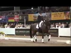 ▶ Dressage Demo by Edward Gal  Hans Peter Minderhoud - Palm Beach 2013 - YouTube