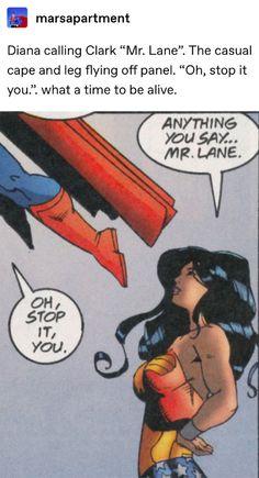 some more of the good kush Nightwing, Marvel Dc Comics, Marvel Avengers, Nananana Batman, Im Batman, Dc Memes, Wonder Woman, Batman Family, Dc Characters
