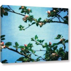 ArtWall Kevin Calkins Spring Blossoms Gallery-Wrapped Canvas, Size: 18 x 24, Blue