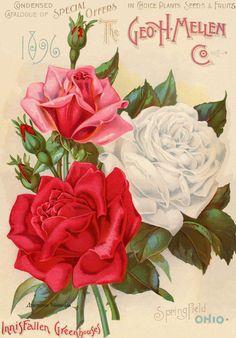 Pub Vintage, Vintage Poster, Vintage Art Prints, Vintage Postcards, Vintage Cards, Decoupage Vintage, Images Vintage, Vintage Pictures, 2 Clipart