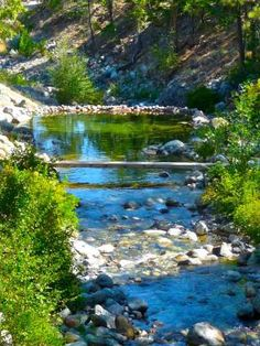 Stewart Mineral Springs in northern California near Mount Shasta. This is a wonderful hot spring. You take a hot bath and a sauna inside the bathhouse, then you plunge into these cool pools outside.