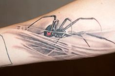 Got this badass Black Widow Spider from Victor Modafferi of Bullseye Tattoo Studios in Staten Island, NY. It's on my right forearm.