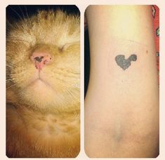 How adorable! This cat parent got a tattoo based on the cute little nose blotch on her pet.