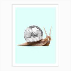 Disco Snail Square Art Print by Paul Fuentes Design - Fy Highland Cow Art, Bus Art, Snail Art, Italy Art, Square Art, Rainbow Print, Spring Art, Giraffe Print, Skull Print