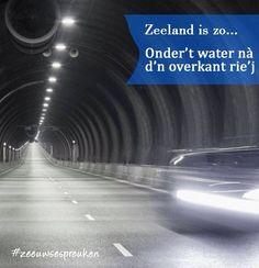 Westerschelde tunnel.