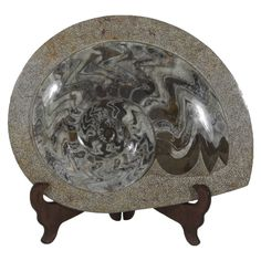 Ancient Polished Fossil, Perhaps  a Nautilus Embedded in Stone | From a unique collection of antique and modern curiosities at https://www.1stdibs.com/furniture/more-furniture-collectibles/curiosities/