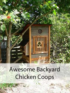 Awesome backyard chicken coops! #urbanchickenfarmer