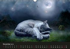Diesel der Kater - CALVENDO Kalender - #katzen #kalender