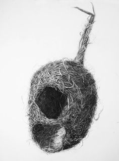 Bird Nest No.3, Charcoal on paper, 100 x 70 cm. Charcoal drawing by Liu Ling from Art Is http://artis.sg - #realism #nature