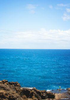 Fishing on the island of #Oahu.  #hawaii #fishing #vacation