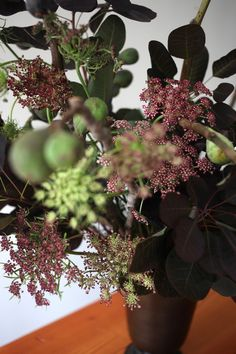 Smokebush Arrangement with figs and Queen Anne's Lace.
