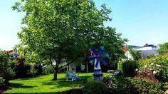 My grandparent's garden.  Der Garten meiner Großeltern.   #german #deutsch #learngerman #vlogdave #youtuber #youtube #dailydeutsch #deutschland #germany #germanlanguage #lifeingermany #dailygerman #photography #fotografie #garden #garten #sunny #sunnyday #natur #nature