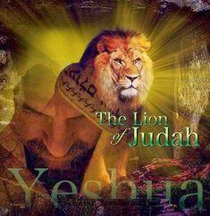 Lion Of Judah Jesus, King Jesus, God Jesus, Christian Warrior, Christian Art, Image Jesus, Lion And Lamb, Pictures Of Jesus Christ, Christian Posters
