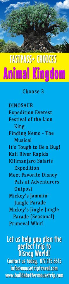 FASTPASS+ choices for advance selection at Disney's Animal Kingdom at Disney World.