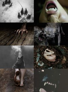 My Piece of Culture Halloween Aesthetics // Werewolf Aesthetic Witch Aesthetic, Aesthetic Collage, Aesthetic Colors, Aesthetic Movies, Fantasy Creatures, Mythical Creatures, Character Inspiration, Character Design, Vampires And Werewolves