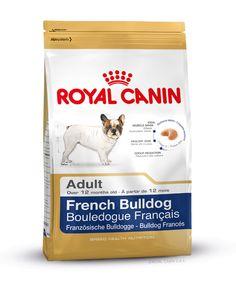 Alleinfuttermittel speziell für die ausgewachsene #Französische #Bulldogge ab dem 12. Monat. Der optimale Proteingehalt (26%) von FRENCH BULLDOG ADULT kann zum Erhalt der Muskelmasse beitragen. Mit L-Carnitin. http://www.royal-canin.de/hund/produkte/im-fachhandel/nahrung-fuer-rassehunde/ausgewachsene-rassehunde/french-bulldog-adult/