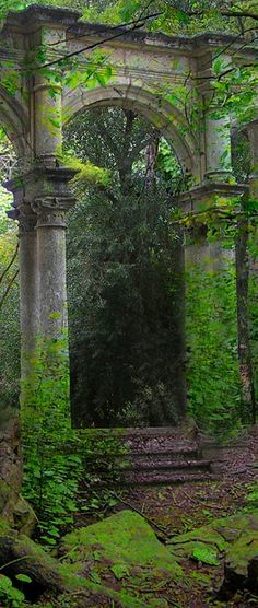 .Beautiful moss covered garden archway