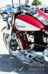 Harley Davidson Framed Prints - Hd Framed Print by Tim Gainey