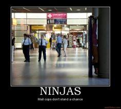 wait.... keep looking... do you see the ninja yet?