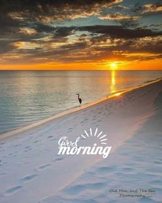Good Morning Pictures, Images, Photos - Page 2 Good Morning Friends Images, Good Morning Beautiful Pictures, Good Morning Beautiful Images, Good Morning Photos, Morning Pictures, Good Morning Sunrise, Good Morning Nature, Good Morning Msg, Good Morning Greetings