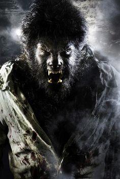 """""""My God, everything is so false, so hellishly stupid and wrong! I am a beast…a stupid, angry beast, sick and rotten."""" Steppenwolf ... photo  Benicio Del Toro in The Wolf Man (2010) movie"""