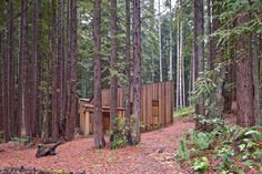 Cabin spaces 2