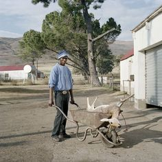 Animal Farm : Daniel Naude