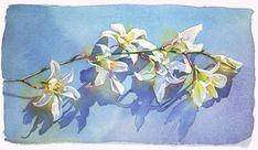 Orchid: Marlies Merk Najaka: Giclée Print - Artful Home