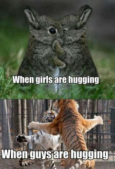 24 best Funny Memes images & Hilarious Pictures If you're having a hard week. We know that the world is strange, but cute funny memes cat and funny pictures Cute Animal Memes, Funny Animal Quotes, Animal Jokes, Funny Animal Pictures, Cute Funny Animals, Funny Cute, Funny Pics, Animal Captions, Funny Stuff