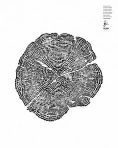Animal Concerns Research & Education Society: Tree Rings. Advertising Agency: DDB, Singapore Product: Wildlife Preservation Chief Creative Officer: Neil Johnson Executive Creative Director: Joji Jacob Creative Director: Thomas Yang Art Director: Gary Lim Art Director: Aaron Koh Copywriter: Khairul Mondzi Digital Artist: Chris Ng Chief Client Officer: Rowena Bhagchandani