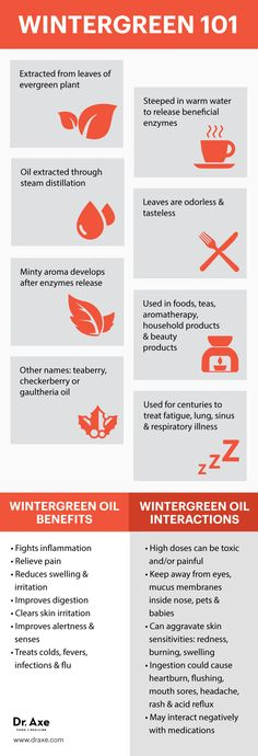 Wintergreen oil benefits & side effects - Dr. Axe http://www.draxe.com #health #holistic #natural